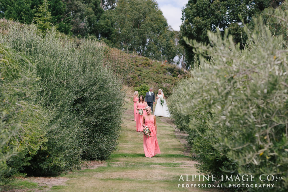 Grand Wedding entrance through the Olive Grove