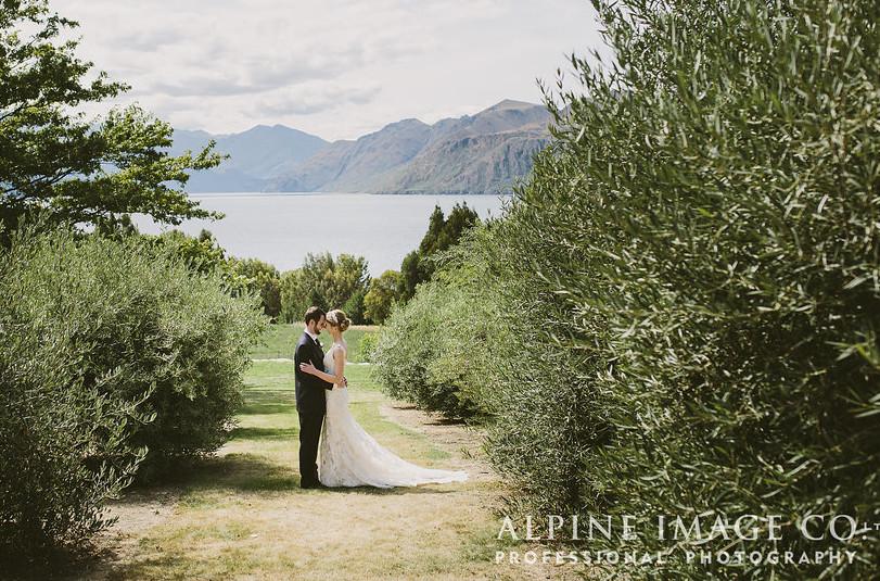 photo by Alpine Image Co.